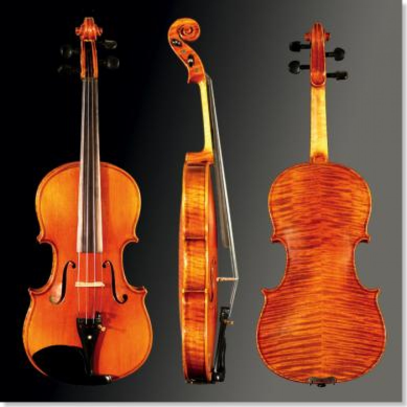 Franz Sandner Violin-Set 90/309