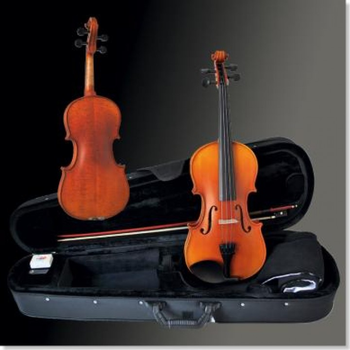 Franz Sandner 4/4 Violin-Set 90/302